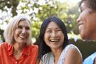 Healthy Postmenopausal Women Volunteers